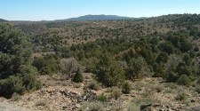 pinyon juniper elk hunt