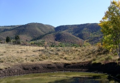 elk hunting pond