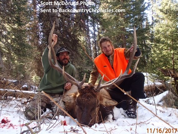 Hunt Elk in Colorado with Over-the-Counter Elk Tags in 2019