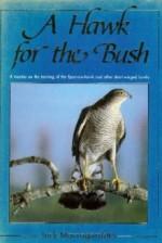 a hawk for the bush