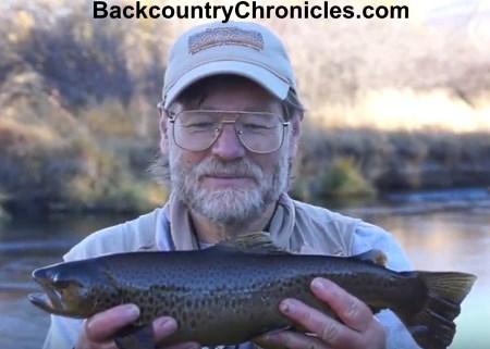 brown trout provo river utah 10-24-17