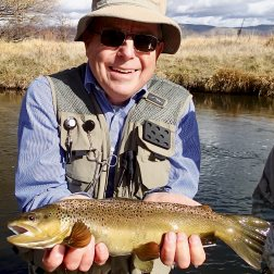provo river brown trout with backcountry adventures flyfishing