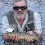 brown trout provo river utah