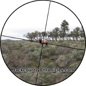canted rifle scope elk shot