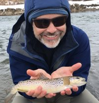 provo river brown trout with backcountrychronicles