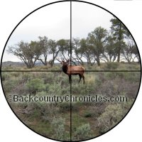 elk 3x scope at 100 yards thumbnail