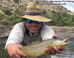 fat brown trout utah Aug-3-17