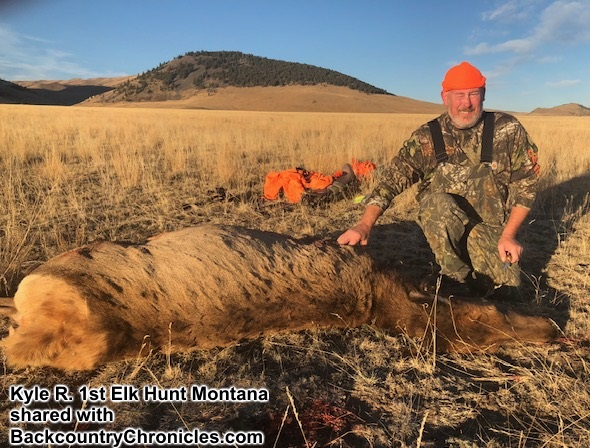 Non-Residents Can Hunt Elk in Montana in 2019