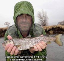 jimmy blackmon's mountain whitefish provo river april 2018