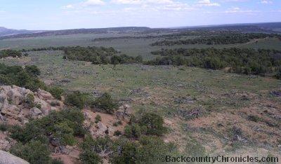 Mixed pj and sage elk and mule deer habitat