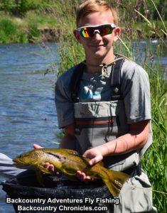 provo river brown trout utah june 2018