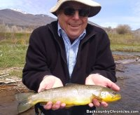 provo river brown trout with backcountry chronicles fly fishing