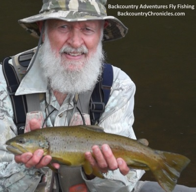 jim's provo river brown trout