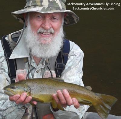 jim's provo river brown trout