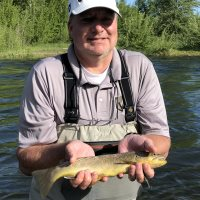 provo river brown trout fly fishing with backcountrychronicles.com