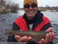provo river rainbow trout