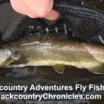 Provo River Fishing Report <br/>Feb 24, 2018