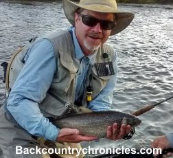 provo river whitefish