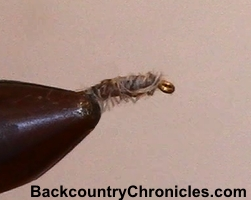 sow bugs are good flies for beginning fly tiers