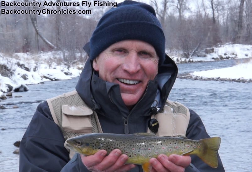 provo river brown trout