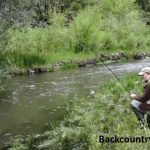 trout fishing on a small stream